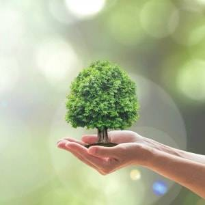 New realm for ESG investing