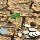 Land banking investment300