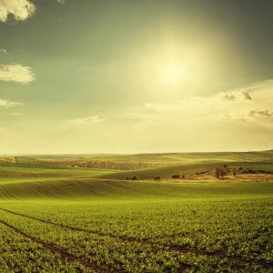 Small-scale investors are being offered the opportunity to buy into one of Australia's biggest agricultural properties, through a crowd-funding campaign.