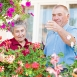 Elderly couple picking flowers at home